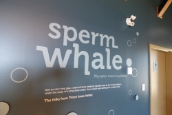 Triton Whale Interpretation Centre